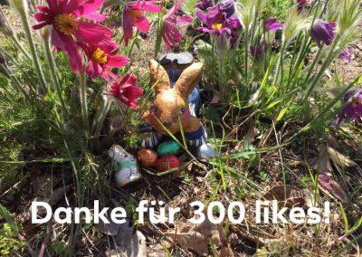 Unsere Woche | 300 Likes